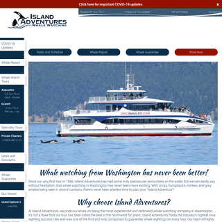 Whale watching in Seattle, WA and San Juan Islands - Island Adventures