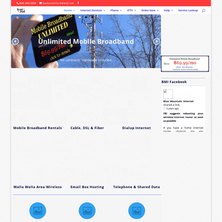 Blue Mountain Internet Home Page - Blue Mountain Internet
