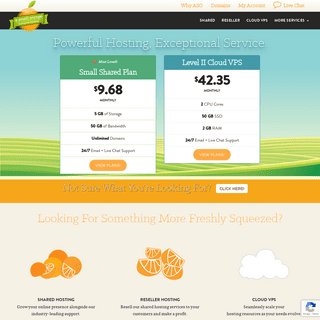 Homegrown Website Hosting - Fast, Reliable Web Hosting