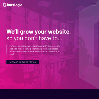 BuzzLogic.com - We`ll Grow Your Website, So You Don`t Have to