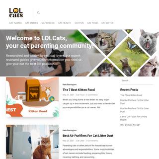 LOL Cats – The #1 cat parenting community