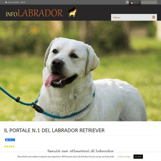IL PORTALE N.1 DEL LABRADOR RETRIEVER - info labrador