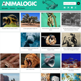 Home - Animalogic